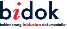 logo bidok